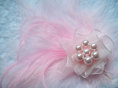 Pale Pink Feather Shoe Clips